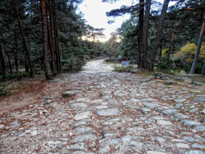 Path of the Cercedilla's Race of Christmas 2015
